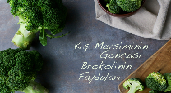 brokoli550X300_mail