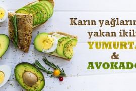 Yumurta ve Avokado İkilisi Karın Yağlarını Yakıyor