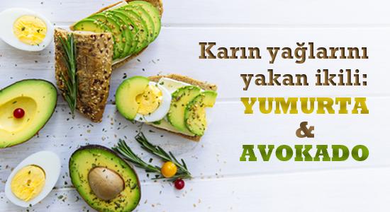 avokado-yumurta_mail