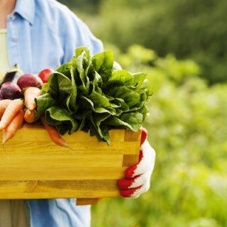 İyi Beslenenler Neden Daha İyi Yaşarlar