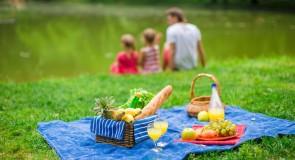 Piknik Hazırlıkları