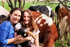 Emanet İneklerden Kendi Çiftliğine: Pales Süt Ürünleri